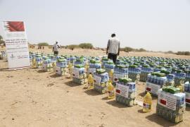 """Bahrain pleases the eye"" Slogan of the people of Sudan when receiving charitable of ""Aleslah"""